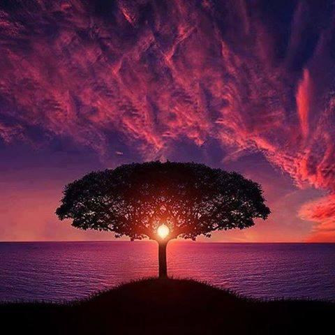 بالصور اجمل الصور بدون تعليق , اجمل صور الطبيعه روعه 146 11