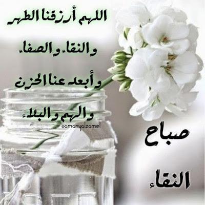 بالصور صباح الخير , اجمل صباح بالصور 147 10