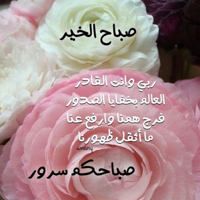 بالصور صباح الخير , اجمل صباح بالصور 147 7