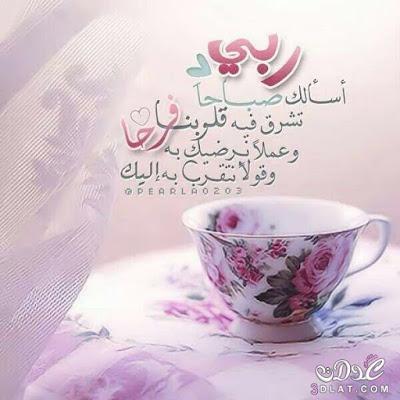 بالصور صباح الخير , اجمل صباح بالصور 147 8
