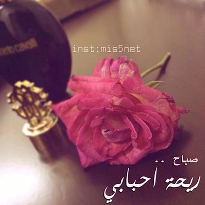 بالصور صباح الخير , اجمل صباح بالصور 147 9