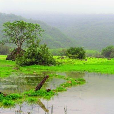 صورة صور الطبيعة , صور طبيعيه حلوه 159 1