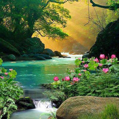 صورة صور الطبيعة , صور طبيعيه حلوه 159 5