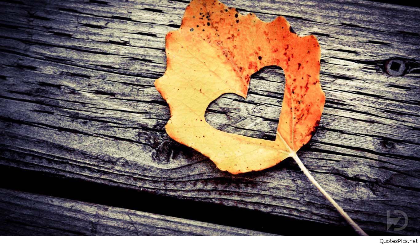 بالصور صور حب hd , احلى صور حب حديثة 164 3