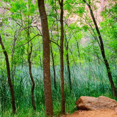 بالصور صور طبيعية , اجمل صور الطبيعه روعه 270 3
