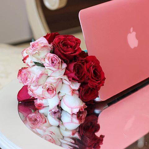 بالصور اجمل الورود الرومانسية المتحركة , ارق مجموعة ورود جميلة 290 10