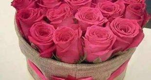 اجمل الورود الرومانسية المتحركة , ارق مجموعة ورود جميلة