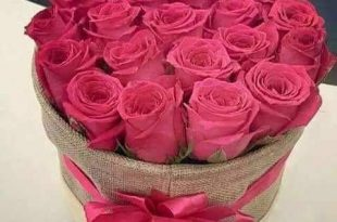 صورة اجمل الورود الرومانسية المتحركة , ارق مجموعة ورود جميلة