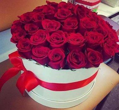 بالصور اجمل الورود الرومانسية المتحركة , ارق مجموعة ورود جميلة 290 2