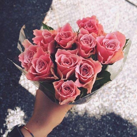 بالصور اجمل الورود الرومانسية المتحركة , ارق مجموعة ورود جميلة 290 3
