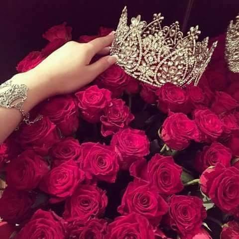 بالصور اجمل الورود الرومانسية المتحركة , ارق مجموعة ورود جميلة 290 5