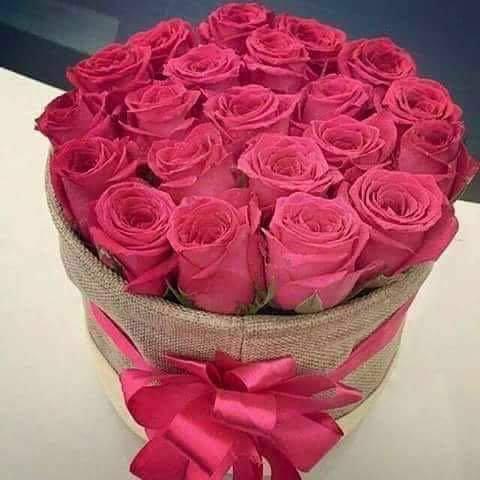 بالصور اجمل الورود الرومانسية المتحركة , ارق مجموعة ورود جميلة 290