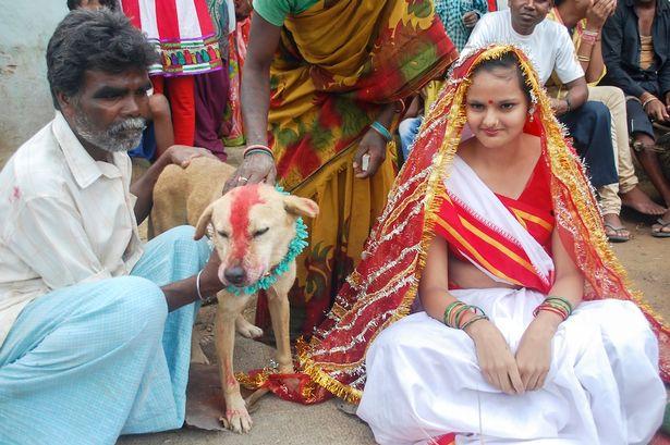 بالصور صور هنديه , احلى صور من الهند 344 2