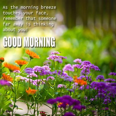بالصور صور صباح الخير , احلى تحية صباح بالصور 401 2