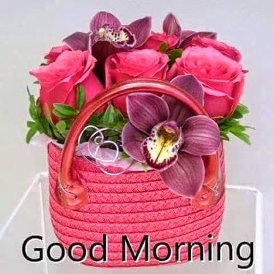 بالصور صور صباح الخير , احلى تحية صباح بالصور 401 5