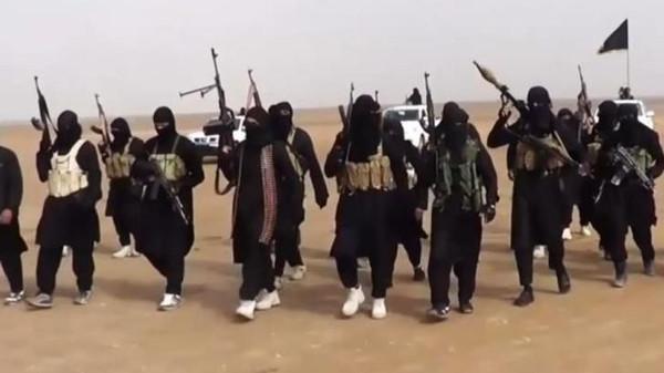 صوره صور داعش , صور تنظيم داعش