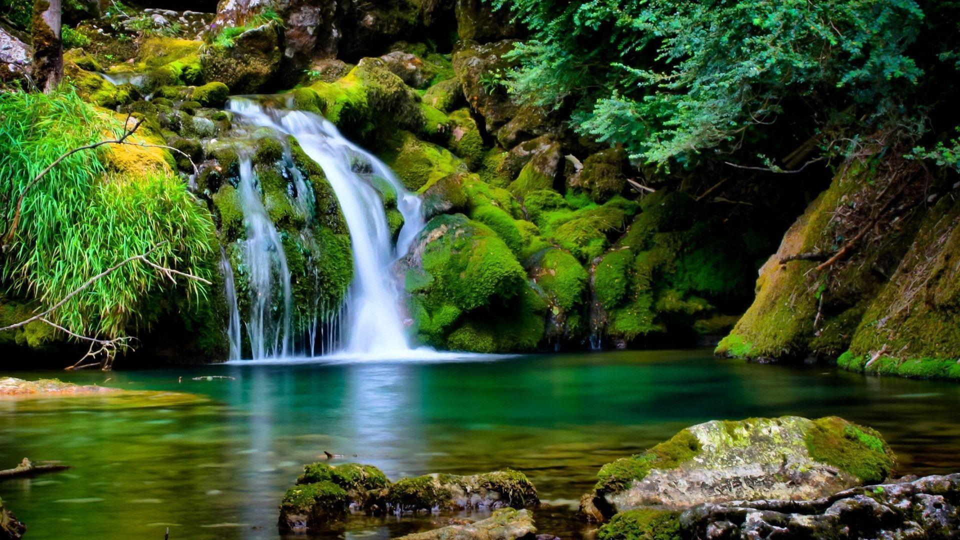 خلفيات الطبيعة Hd Tabiea Blog