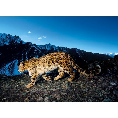 بالصور صور متنوعه , مجموعة صور روعه 455