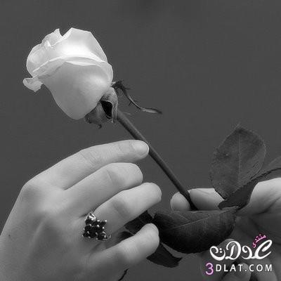 بالصور اجمل صور رومانسية , رومانسيات رائعه بالصور حصرى 485 6