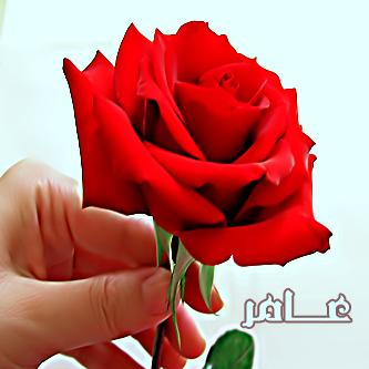 صوره صور اسم عامر , تصاميم لاسم عامر