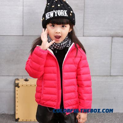 بالصور صور بنات اطفال , اجمل اطفال بنات صور حصريه 541 4