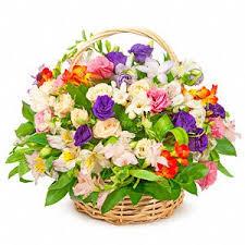 بالصور صور زهور , اجمل زهور بالصور حصرى 560 2