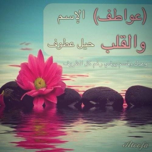 صورة صور باسم عواطف , تصاميم اسم عواطف حلوه