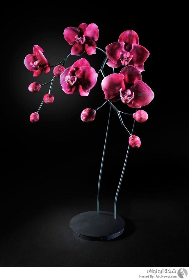 بالصور صور ازهار , مجموعة صور زهور جديدة 642 3