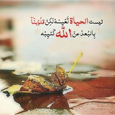 بالصور صور دينيه , حمل اجمل صور اسلامية روعه 73 1