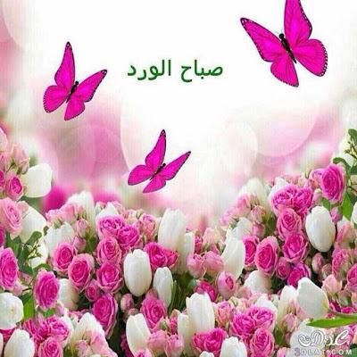 بالصور بطاقات صباح الخير روعه , احلى تحيات الصباح روعه 2019 80