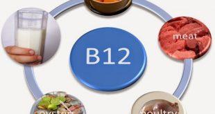 بالصور ما هو فيتامين b12 , فيتامين b12 4251 1 310x165