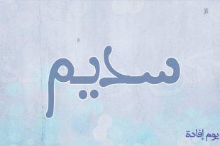 صوره معنى اسم سديم , معني سديم
