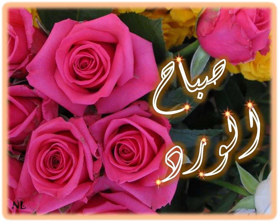 بالصور صباح الخير وكل الخير , صباحك نور وهنا وسرور 4885 6