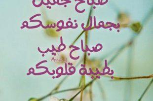 بالصور كلمات صباح الخير , اجمل كلمات صباح الخير 4909 10 310x205