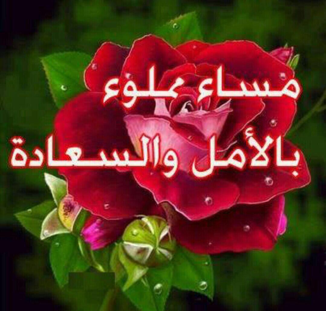 صورة رمزيات مساء الخير , رسايل مساء الخير بالصور 4974 6