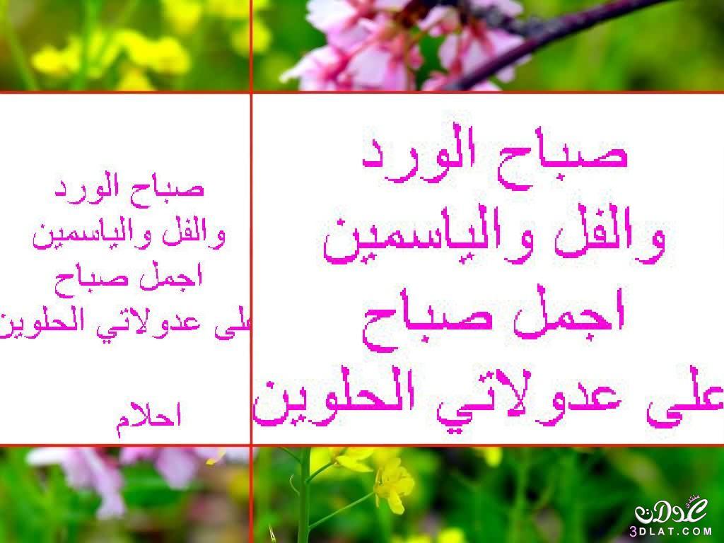 صوره صباح نور , اجمل صور صباح الخير