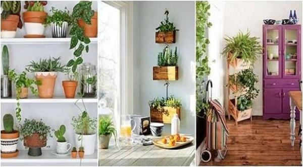 صوره تزيين المنزل , طريقة ترتيب البيت وتنظيمه