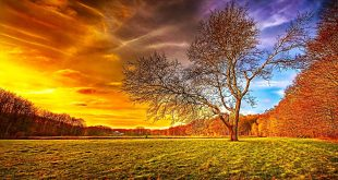 صور جمال الطبيعة , اجمل بوستات لروعة الطبيعة