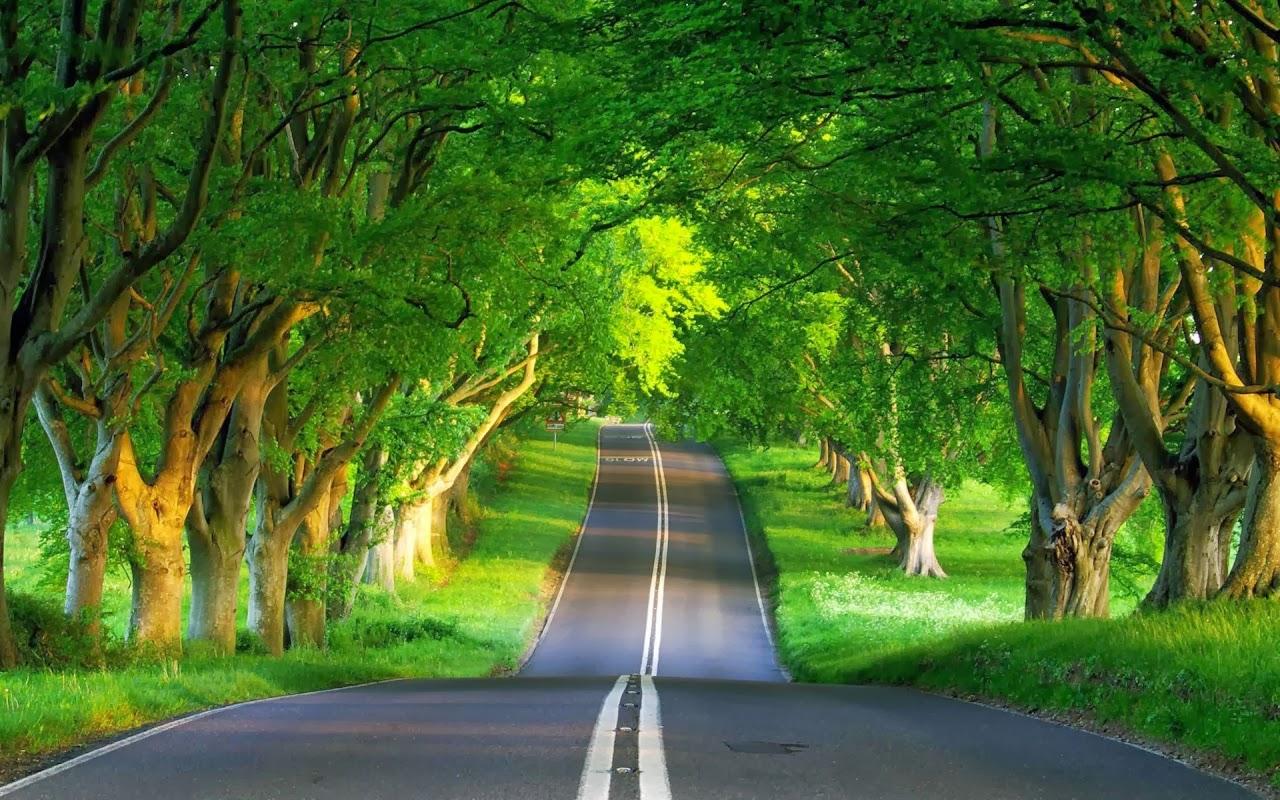 بالصور صور جمال الطبيعة , اجمل بوستات لروعة الطبيعة 5160 6