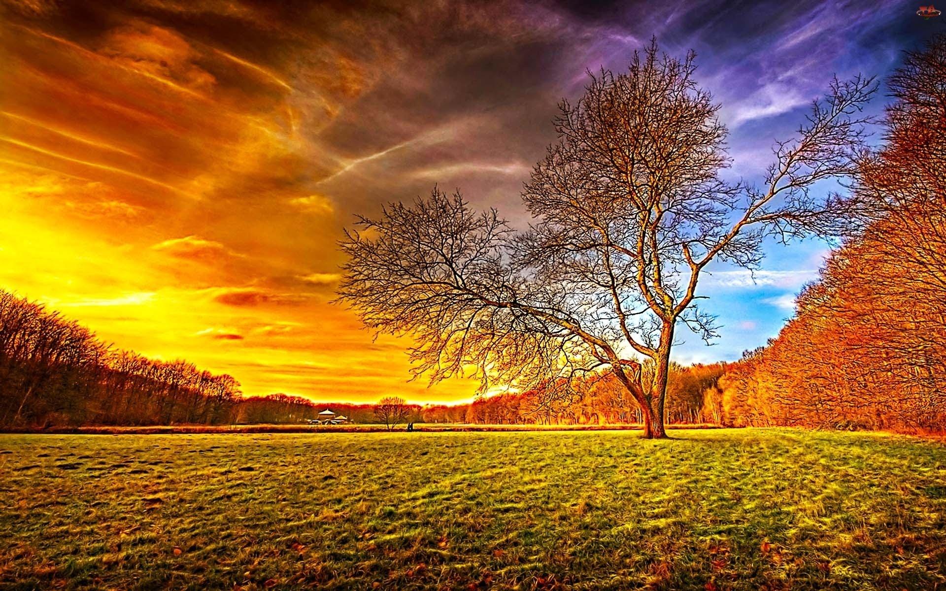 بالصور صور جمال الطبيعة , اجمل بوستات لروعة الطبيعة 5160