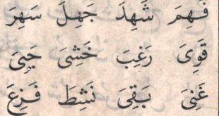 صوره كلمات عربية , كلام باللغة العربية