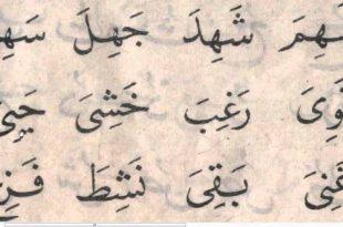 بالصور كلمات عربية , كلام باللغة العربية 5203 10 310x205