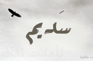 صورة معنى سديم , معنى اسم سديم واذا كان مخالف للشرع ام لا