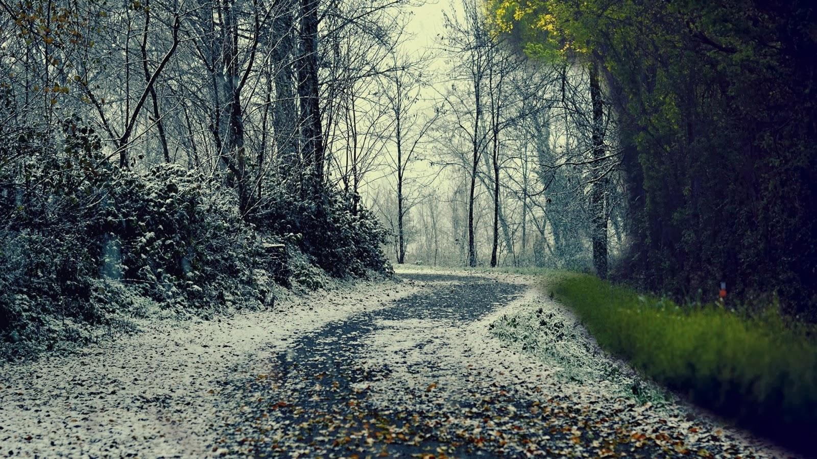 صوره صور مناظر حلوه , مناظر الطبيعة الخلابة اسرة للروح