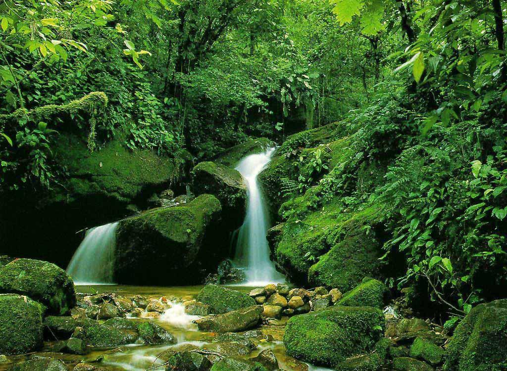 بالصور صور مناظر حلوه , مناظر الطبيعة الخلابة اسرة للروح 3213 10