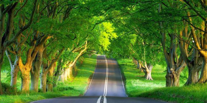 صورة صور مناظر حلوه , مناظر الطبيعة الخلابة اسرة للروح