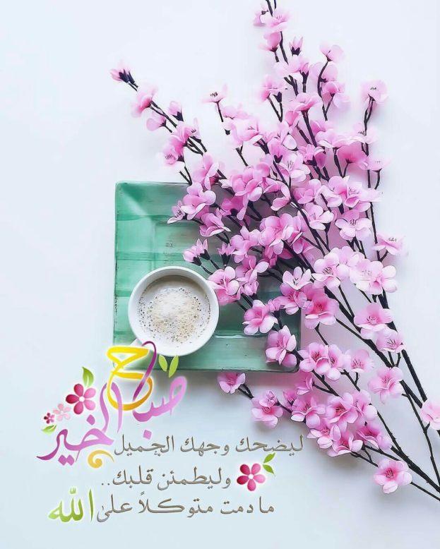 بالصور اجمل صباح للحبيب , صباح الخير واجمل صور الصباح الرائعة 3214 4