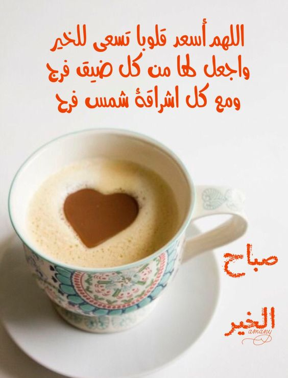 بالصور اجمل صباح للحبيب , صباح الخير واجمل صور الصباح الرائعة 3214 7