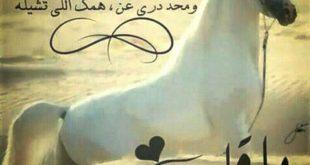 صور كلمات لها معنى في القلب , اقوى كلمات تاثيرا فى القلب