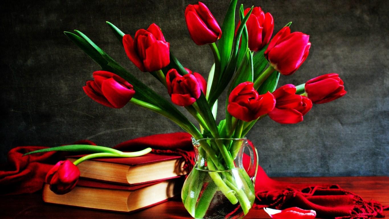 بالصور صور اجمل ورد , صور وقت تزهير الورد رائعة 3224 3